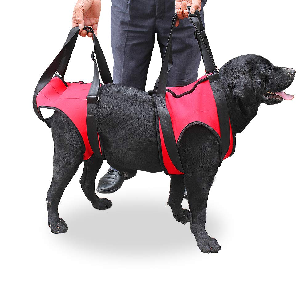 Red M Red M FastEngle Portable Dog Lift Support Harness Dog Auxiliary Belt with Handle for Canine aid Dog Rehabilitation Harness Assist Sling Helps Medium and Large Dog Pet to Go Up Down Stairs, (M, Red)