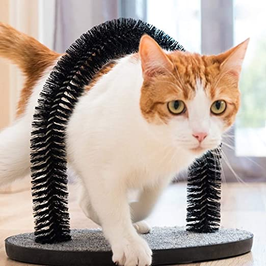 Rascador de masaje para gatos y gatos con cerdas suaves y cómodas que arañan la cabeza de los animales.: Amazon.es: Productos para mascotas