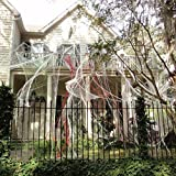 #7: Halloween Spider Webs Stretchable (400 Square Feet) Extra Large | Indoor & Outdoor Spooky Cobwebs with 28 Fake Black Spiders Halloween Decorations