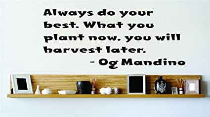 Amazoncom Always Do Your Best What You Plant Now You Will Harvest