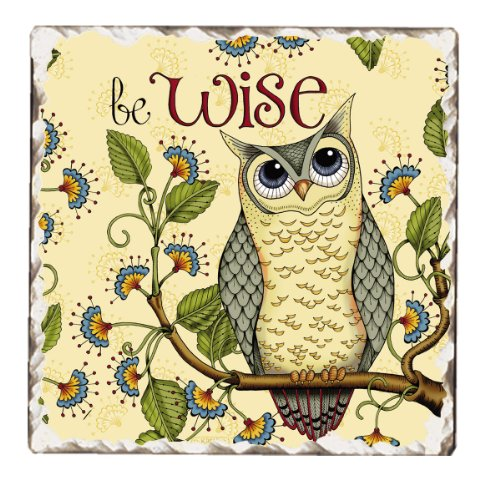 Owl Tile - CounterArt Tumbled Tile Coasters, Wise Owl, Set of 4