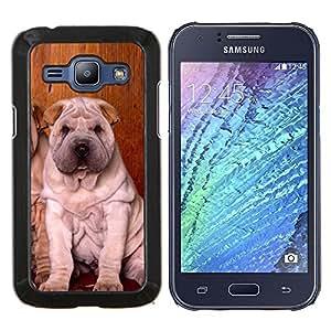 YiPhone /// Prima de resorte delgada de la cubierta del caso de Shell Armor - Los cachorros Shar Pei Sentado arrugado perro - Samsung Galaxy J1 J100