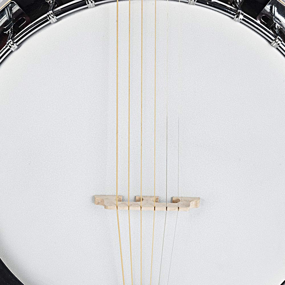 Top Grade Exquisite Professional Sapelli Notopleura Wood Alloy 6-string Banjo by Teekland (Image #9)
