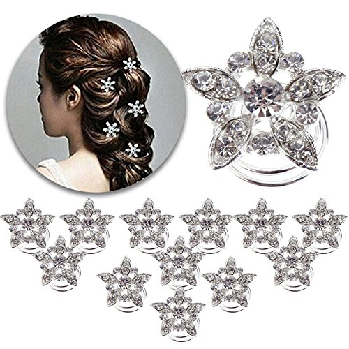Hair Styling Hairstyling Set of 12pcs Spiral Hairdos Pins Twists Hairpins Twister Slides Curlies Coils Bridal Weddings Bridesmaids Decorations With Flowers Shapes and Crystals Rhinestones (Fabulous Feather Pin)