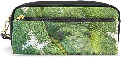 Estuche para lápices, diseño de camaleón, color verde: Amazon.es: Oficina y papelería
