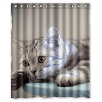 Lazy Whire Cat Bestselling New Style Custom Fabric Shower Curtain 60Wx72