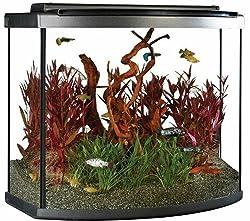 Fluval 26-gallon bow front aquarium