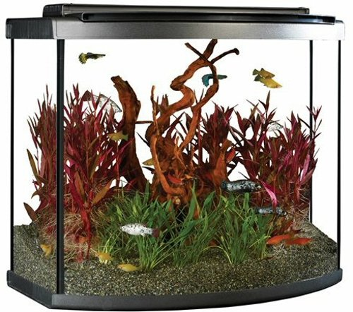 Fluval 15227 26 Bow Aquarium Kit