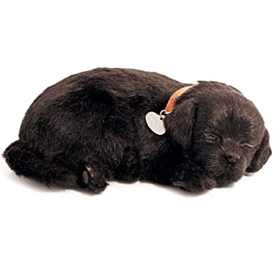 Perfect Petzzz PP91-22BV6 Black Lab: Toys & Games