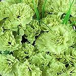 Efavormart-252-Mini-Artificial-Carnations-for-DIY-Wedding-Bouquets-Centerpieces-Arrangements-Party-Home-Decorations-Lime-Green