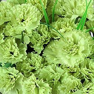 Efavormart 252 Mini Artificial Carnations for DIY Wedding Bouquets Centerpieces Arrangements Party Home Decorations - Lime Green 2