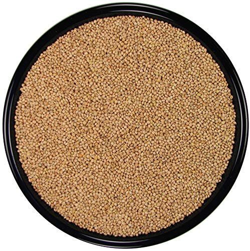 SLEEK & SASSY NUTRITIONAL DIET All Natural White Proso Millet for Birds (20 lbs.)
