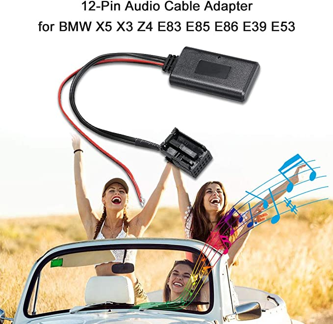 Carrfan Adaptateur de C/âble Audio R/écepteur BT Port 12Pin pour BMW X5 X3 Z4 E83 E85 E86 E39 E53