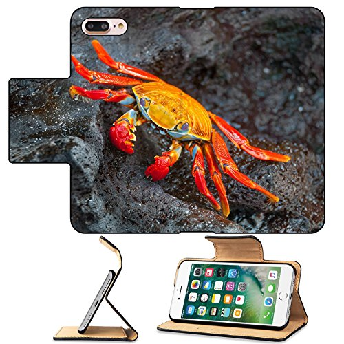 Sally Lightfoot Crab - MSD Premium Apple iPhone 7 Plus Flip Pu Leather Wallet Case Sally lightfoot crab at rest on a black basalt rock IMAGE 21821679