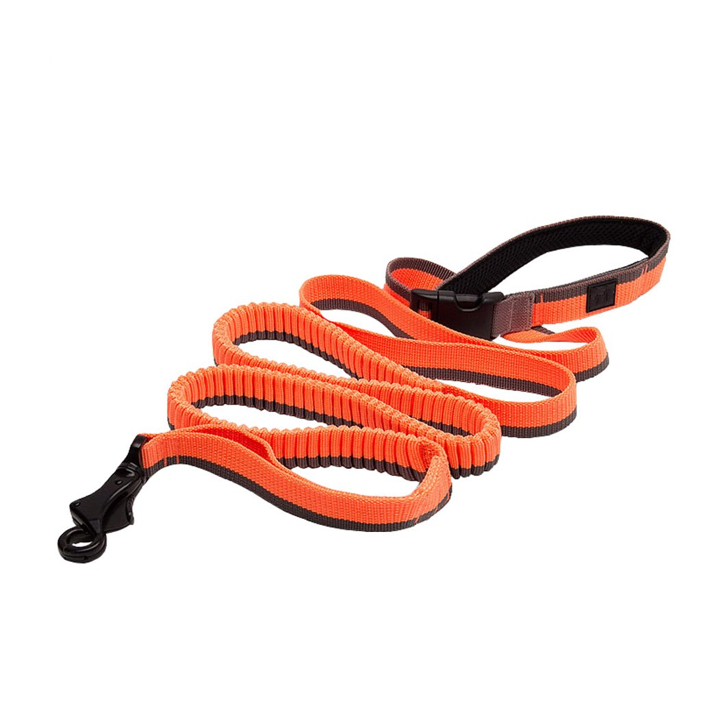 orange L orange L GWM Leashes Pet Traction Rope, Dog Leash, Buffer Elastic Traction Rope, Dog Chain, Dog Leash, golden Retriever Large Dog Cushion Elastic Traction Rope (color   orange, Size   L)