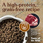 Taste of The Wild Grain Free Premium High Protein Dry Dog Food High Prairie Adult – Roasted Bison and Venison