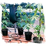 Drip Watering Irrigation System for 6 Plants - Best Reviews Guide