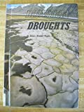 Disaster!, Dennis Brindell Fradin, 0516008587