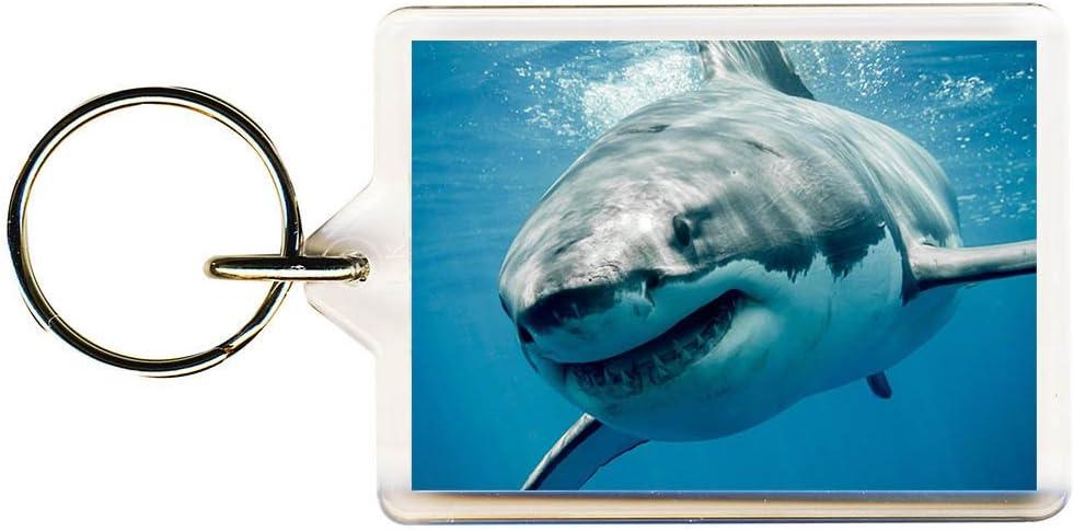 S8keMedia GREAT WHITE SHARK Keyring 50mm x 35mm