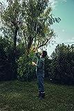 Fiskars PowerGear X Telescopic Tree Pruner