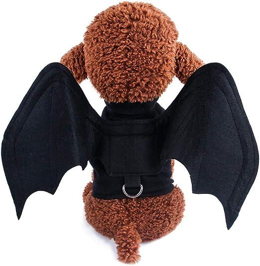 XING Disfraz de Halloween para Perro, Impresionante Cosplay ...