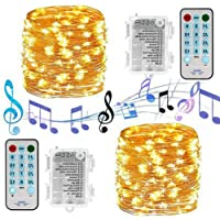 DanYee Indoor Fairy String Lights Battery Powered Waterproof 8 Modes Copper Wire Twinkle String Lights Remote Control Christmas Decoration Lights Decorative Silver Wire Lights for Bedroom ,Patio,Outdoor Garden,Stroller,DecorTree. (Battery-warm White-100LED 10M(2Packs))