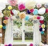 "Life Glow Pom Poms 12Pcs of 10"" 12"" 14"" Multi-Colors Tissue Paper Craft Pom Poms Flowers Wedding Party Decor"