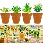 Augshy-24-Pack-Artificial-Succulent-Plants-Unpotted-Mini-Fake-Succulents-Plant-for-Lotus-Landscape-Decorative-Garden-Arrangement-Decor