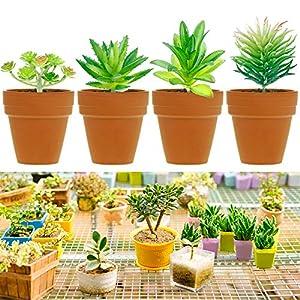 Augshy 24 Pack Artificial Succulent Plants Unpotted Mini Fake Succulents Plant for Lotus Landscape Decorative Garden Arrangement Decor 5