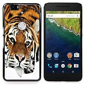 Queen Pattern - FOR Huawei Nexus 6P - Sad Tiger Orange Stripes Fur Feline - Cubierta del caso de impacto con el patr???¡¯???€????€?????n A