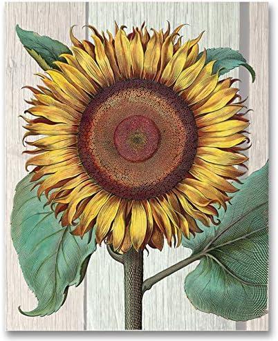 Sunflower Brown Art Print Home Decor Wall Art Poster G