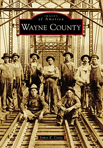 Wayne County (Images of America) (Ar Smith Va Fort)