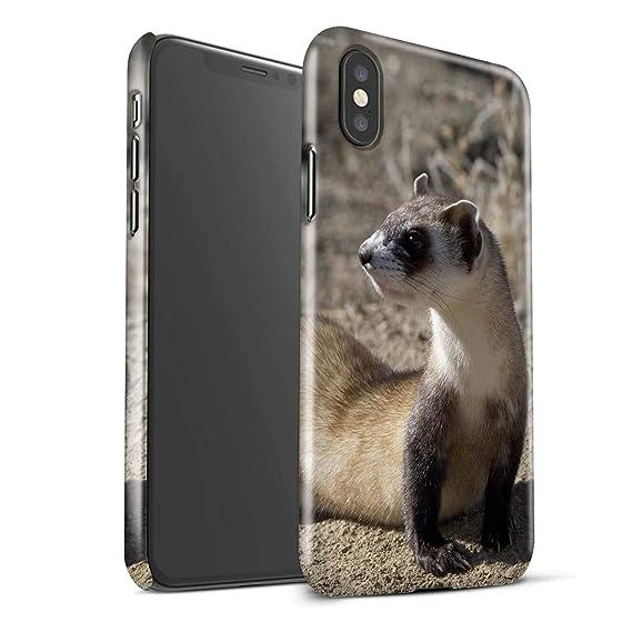 Amazoncom Stuff4 Gloss Hard Back Snap On Phone Case Apple Iphone