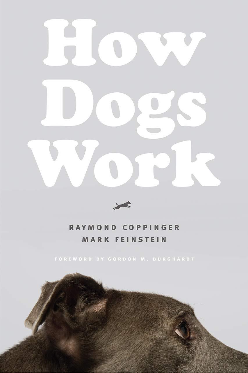 How Dogs Work: Amazon.es: Raymond Coppinger, Mark Feinstein ...