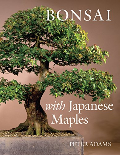Bonsai with Japanese Maples (Pruning Japanese Maple Trees)