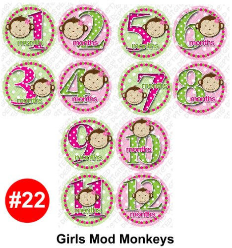 GIRL MOD MONKEYS Baby Month Onesie Stickers Baby Shower Gift Photo Shower Stickers, baby shower gift by OnesieStickers