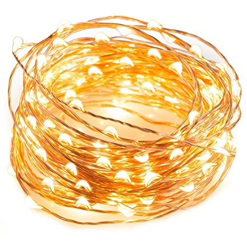 SENYERGIANT Led String Lights, 33 ft 100 LEDs Waterproof Warm White on Copper Wire,Fairy Lights with Remote Control and Power Adapter (String Lights Wire On)