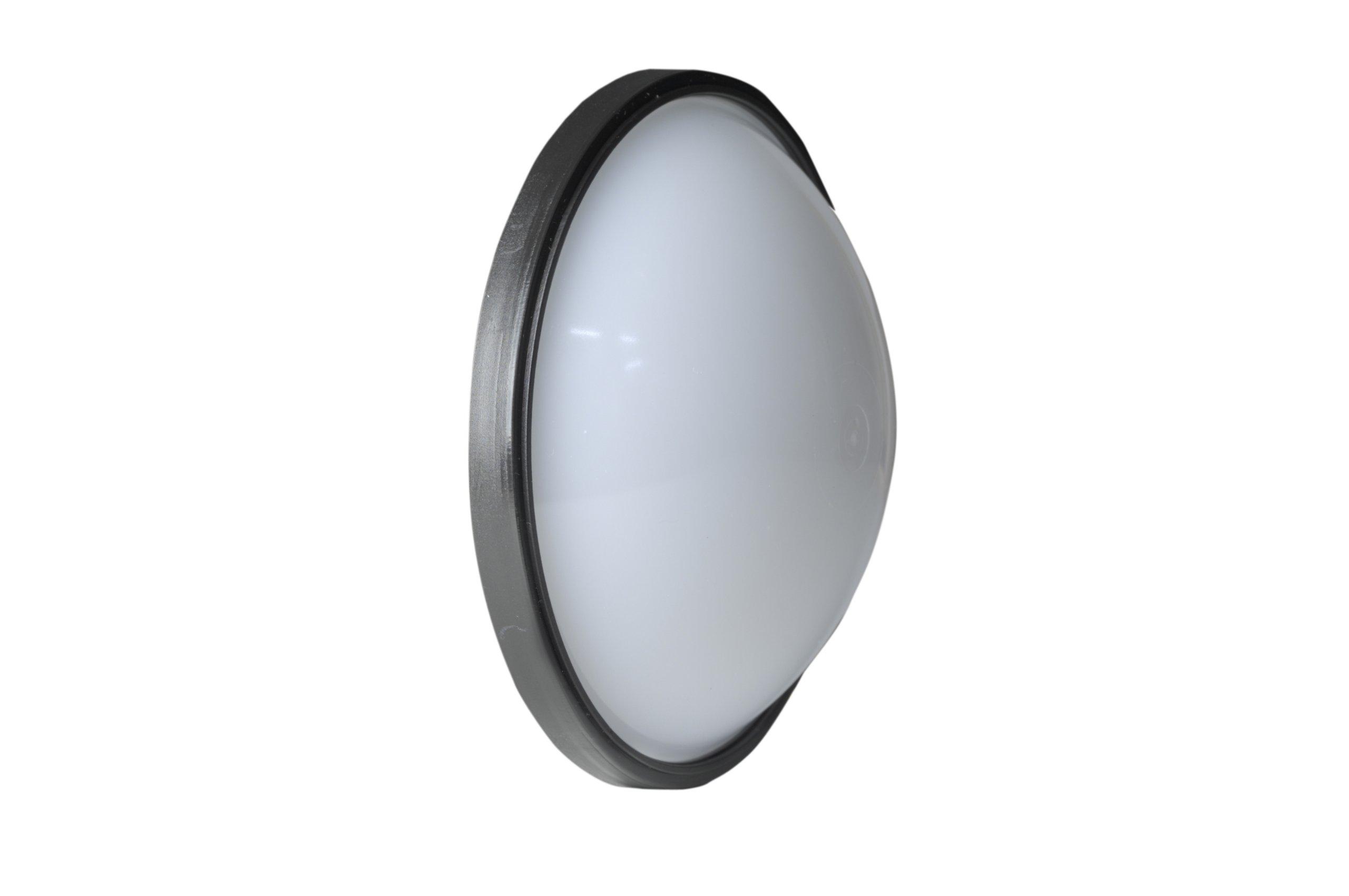 Quantum Qflash T & X Series Wide Angle Diffuser for Reflector (QF67A)