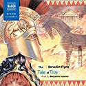 The Tale of Troy Audiobook by Benedict Flynn Narrated by Benjamin Soames