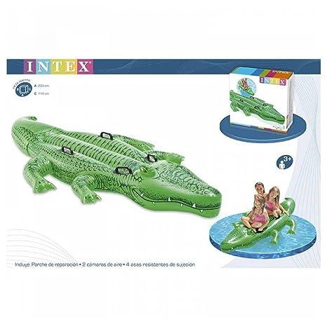 Intex 1703496031 - cocodrilo hinchable 3 años: Amazon.es: Bebé