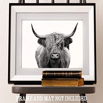 Amazon.com: Lone Star Art Highlands Cow Black and White ...