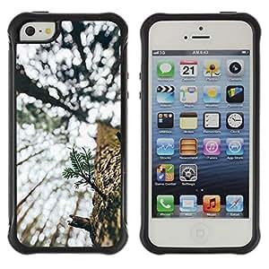 Suave TPU GEL Carcasa Funda Silicona Blando Estuche Caso de protección (para) Apple Iphone 5 / 5S / CECELL Phone case / / Tree Summer Bark Woods Nature Wilderness /