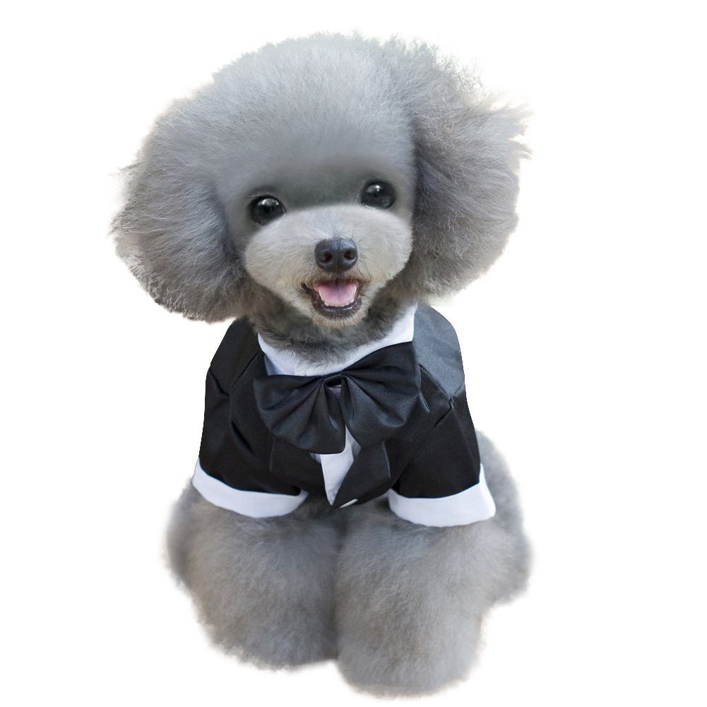 Kuoser Dog Shirt Puppy Pet Small Dog Clothes, Stylish Suit Bow Tie Costume, Wedding Shirt Formal Tuxedo with Black Tie, Dog Prince Wedding Bow Tie Suit (L(Back: 12'',Chest: 17'',Neck:12''), Black) by Kuoser (Image #6)