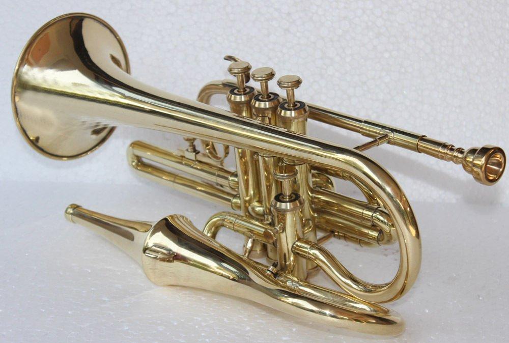 Shreyas Bb Flat Brass Finish Echo Cornet With Free Case Box & Mouthpiece