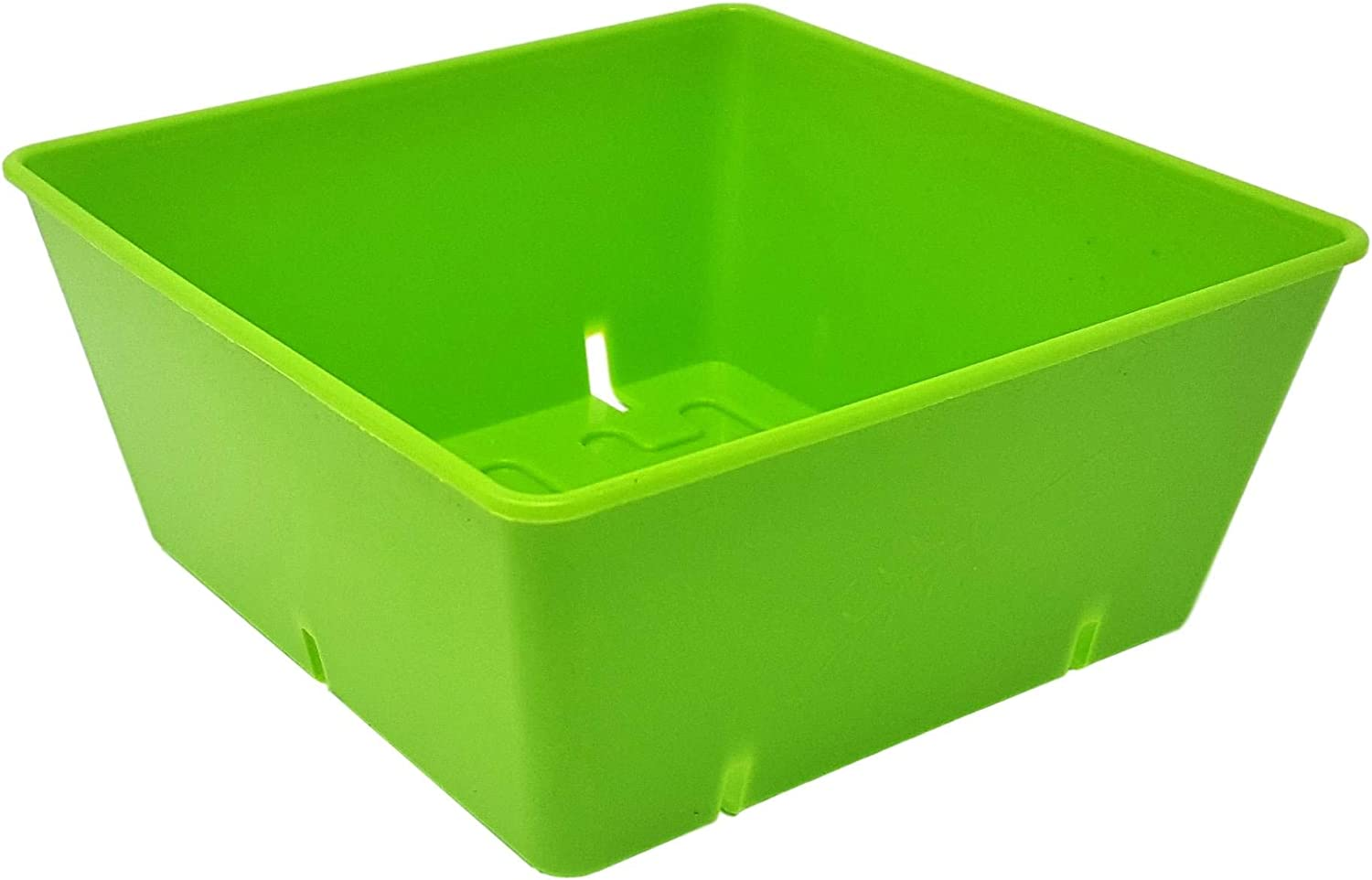 5×5 Seed Tray Green – 80 Pack – Extra Strength 5 x 5 Inserts Grow Microgreens, Wheatgrass Seeds, Fodder 1020 System 801 Trays