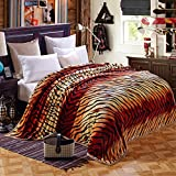 Bedding Extra Soft Coral Fleece Blanket Lightweight Thickening Throw/Bed Blanket Color Blanket Tiger Stripes King(91''X99'')