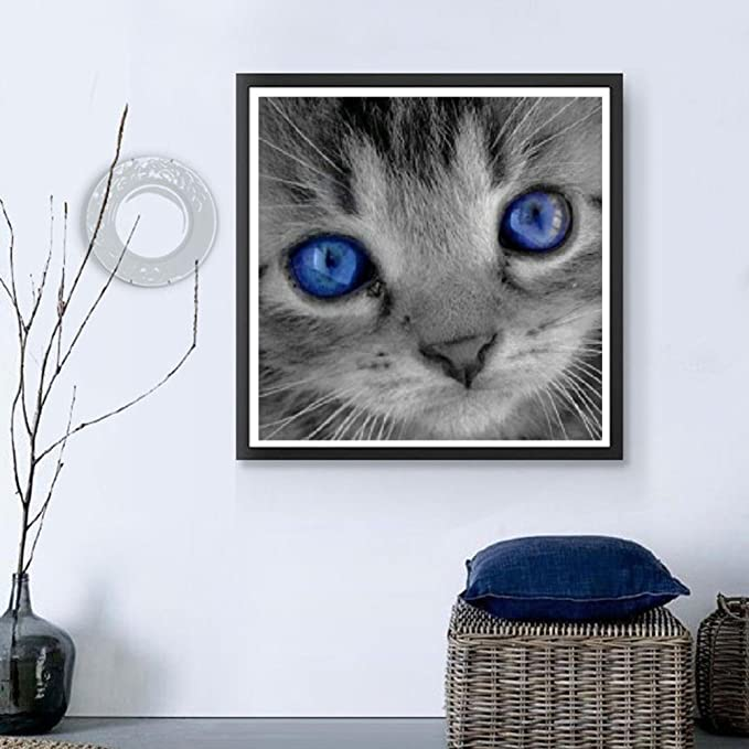 Amazon.com: Shuohu Cat 5D Diamond Painting Crystals Embroidery DIY Paint-By-Diamond Kit - Resin Cross Stitch Kit