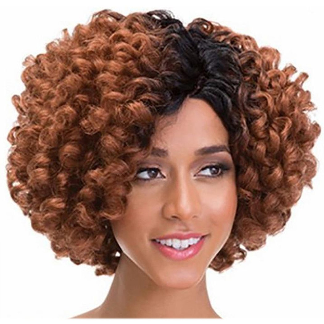 Inkach Curly Short Wigs For Black Womens - Fluffy Kinky Gradient Color Cosplay Party Synthetic Hair Wig