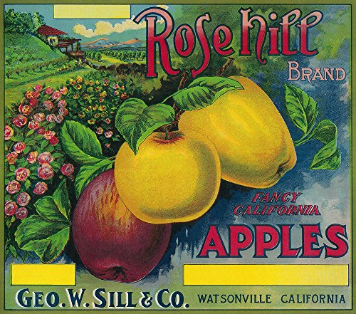 Apple Crate Label Art - Rose Hill Apple Crate Label (12x18 Art Print, Wall Decor Travel Poster)
