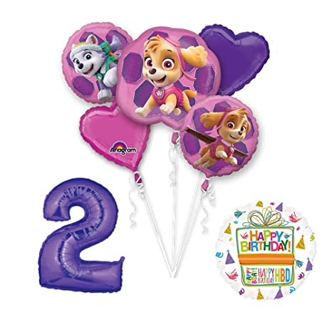 Amazon PAW PATROL SKYE EVEREST 2nd Birthday Party Balloons Decoration Supplies Chase Ryder By Mayflower Products Toys Games